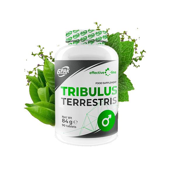 Tribulus Terrestris 90 tbl